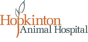 Hopkinton Animal Hospital is a veterinary hospital in Hopkinton, NH, that treats dogs and cats and small exotic pets such as birds, ferrets, rabbits, and reptiles. Hopkinton Animal Hospital is AAHA certified, assuring that we meet top quality standards governing veterinary practice and our professionals stay current on all the latest veterinary treatments.
